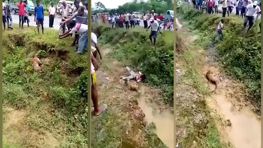 Pobladores se acercan a leopardo 'muerto' para tomarse 'selfies' y sucede lo peor