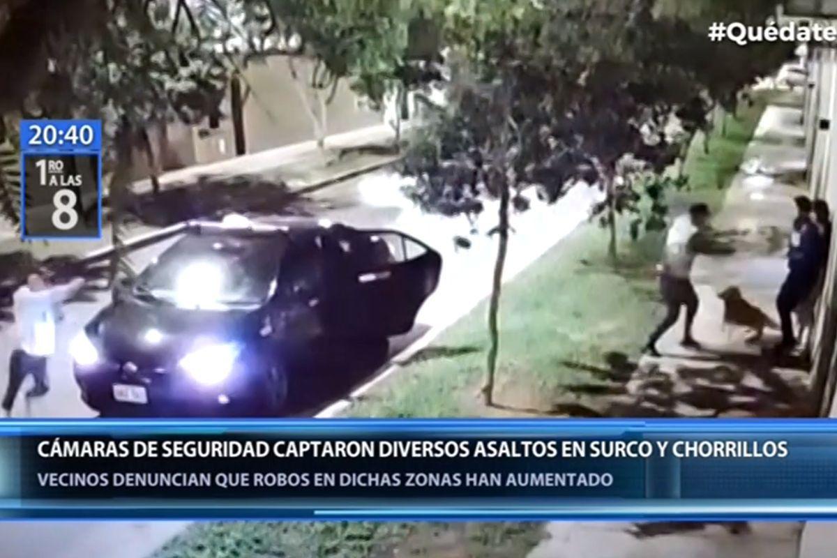Surco: mascota salió en defensa de sus dueñas y mordió a delincuentes durante asalto | VIDEO