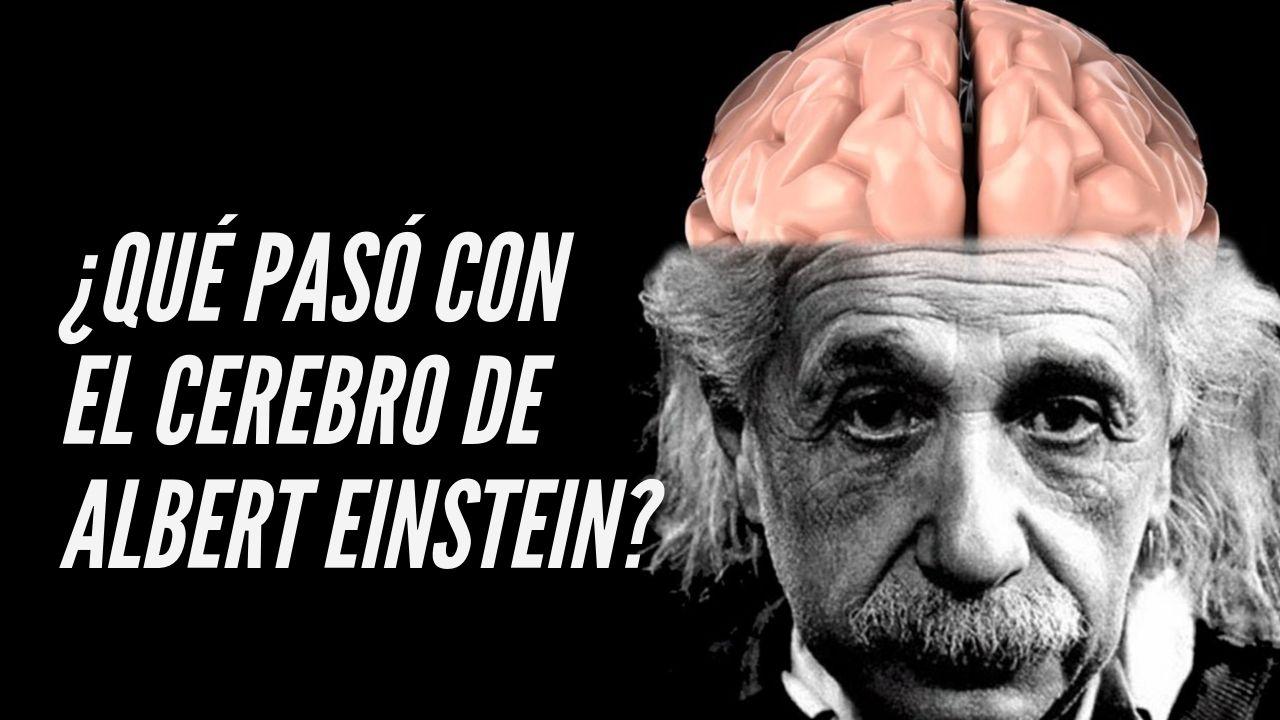 ¿Qué pasó con el cerebro de Albert Einstein?