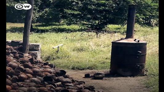 Utlizan el coco como carbón en Kenia