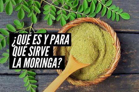Moringa: Descubre qué es y para qué sirve esta milagrosa planta