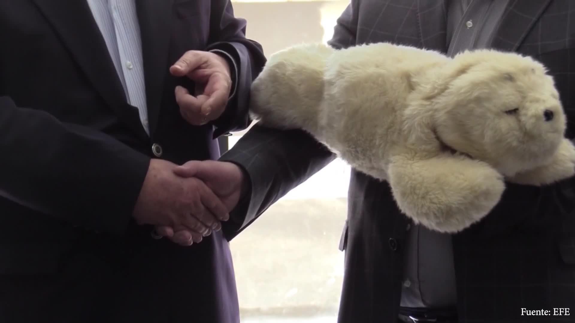 Una foca robot acompañará niños enfermos de cáncer en Uruguay