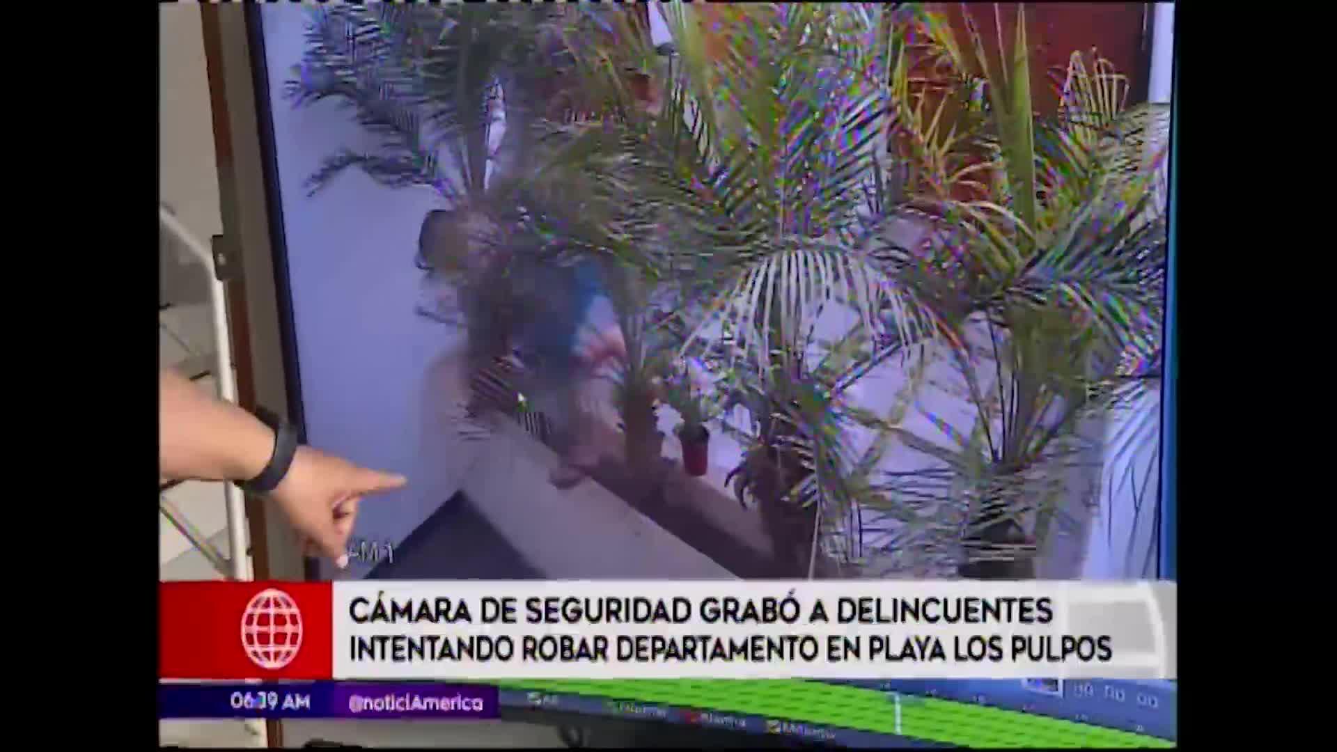 Playa Los Pulpos : video muestra a delincuentes intentando robar departamento