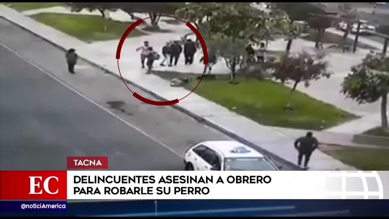 Tacna: Hombre es asesinado a puñaladas tras resistirse al robo de sus perros