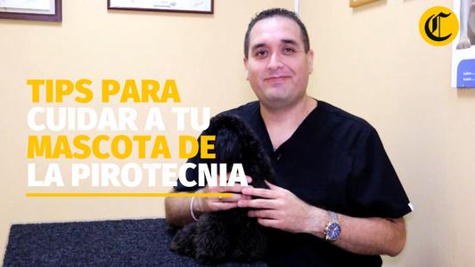 Todo lo que tienes que saber para proteger a tu mascota de los pirotécnicos